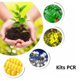 PCR Kits