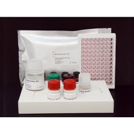 ELISA AFLATOXINE B1 Spécifique